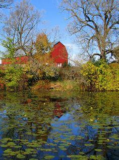 barn reflections