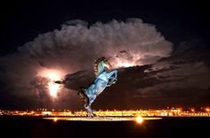 Demon Horse at Denver International Airport. Gotta love what Colorado considers welcoming to the world. (We live in Colorado Springs Mustang Azul, Mustang Horses, Ufo, Soundtrack, Denver Airport, Foto Blog, Fractal, Blue Horse, Emerald City