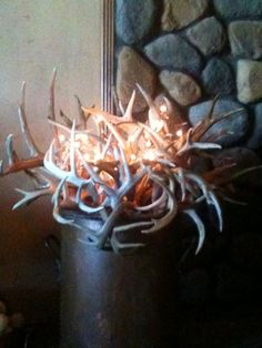 Antlers in a copper pot! Had an antique copper pot, filled it with antlers and put in some small twig lights. It also looks great with twigs! Cowboy Christmas, Woodland Christmas, Twig Lights, Antler Art, Branch Decor, Cowgirl Chic, Western Homes, Cow Skull, The Ranch