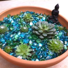 Succulents. Zen lotus pot garden with Buddha.