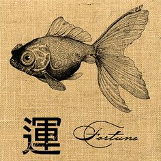 I love this illustration it would make an awesome tattoo. Japanese woodblock goldfish.