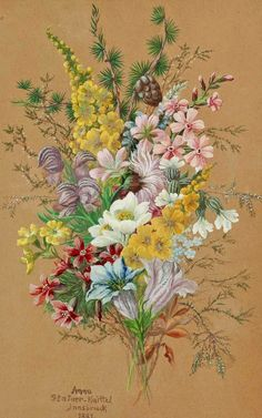 Alpine flowers by Anna Stainer-Knittel Botanical Flowers, Botanical Art, Art Floral, Flower Prints, Flower Art, Watercolor Flowers, Watercolor Art, Alpine Flowers, Illustration Blume