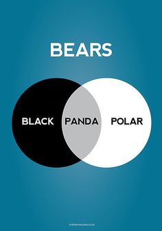 Pandas are a mix of Black Bears and Polar Bears.