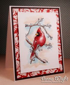 Card by Anna Wright  (120414)  [Impression Obsession (stamps) Pine Sprig Cluster, Snowy Branch Cardinal]