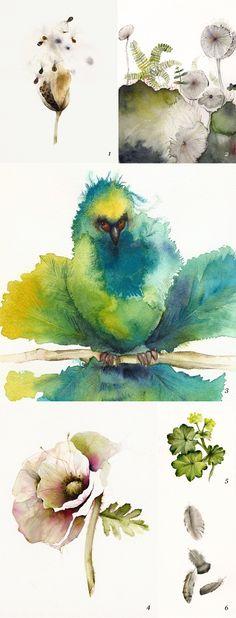 アンバーアレキサンダーによる水彩画のイラスト