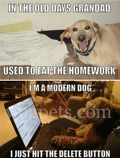 In the old days grandad used to eat the homework. I'm a modern dog I just hit the delete button