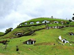 There's a real-life Hobbit village in New Zealand. - MataMata, New Zealand. Oh The Places You'll Go, Places To Travel, Travel Destinations, Places To Visit, Holiday Destinations, Bora Bora, Earth Sheltered Homes, Machu Picchu, Mykonos