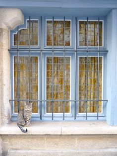 Love the colour on this window - cute cat also :) Quimper
