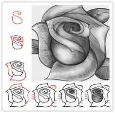 How To Draw A Rose | IKEA Decoration
