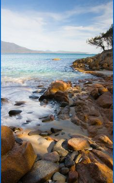 10 Best Tasmania Beaches. The West Coast of Tasmania is far more remote and less accessible than the east coast of Tasmania. Ocean Beach is the longest Tasmanian beach, with 30km of white sand connecting Macquarie Heads and Trial Harbour. #nature #water #tasmania #Australia #travel #summer #freycinet #beaches Ocean Beach, Tasmania, Australia Travel, Beautiful Beaches, East Coast, Scenery, Wildlife, Island, Explore