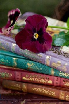 by Ana Rosa Old Books, Antique Books, Vintage Books, Vintage Library, I Love Books, Books To Read, Michel De Montaigne, Book Flowers, Night Flowers
