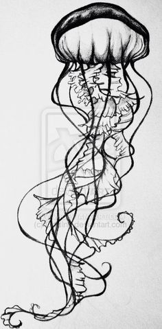 Jellyfish tattoo, this one was done in pencil still have yet to ink it, if you are interested in a tattoo design please visit my journal. Leg Tattoos, Body Art Tattoos, Sleeve Tattoos, Cool Tattoos, Heart Tattoos, Jellyfish Painting, Jellyfish Tattoo, Jellyfish Drawing, Jellyfish Aquarium