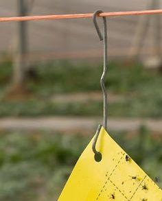 Homo agricola: Enganchando (que no colgando) placas