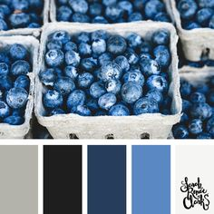 blue and gray color palette | Click for more color combinations and color palettes inspired by the Pantone Fall 2017 Color Trends, plus other coloring inspiration at http://sarahrenaeclark.com | Colour palettes, colour schemes, color therapy, mood board, color hue