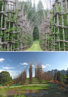 """Organic Church (Italy): """"Located on the outskirts of Bergamo, at the foot of Monte Arena, the Tree cathedral, created by Italian artist Giuliano Mauri, is one of the world's most impressive examples of organic architecture. Church Architecture, Organic Architecture, Italy Architecture, Church Design, Cathedral Church, Chapelle, Place Of Worship, Places To See, Beautiful Places"""