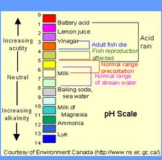 Look At The Scale On The Left You Can See The Ph Of Pure Water