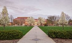 Hello Walk, Purdue Campus - Chris Harnish Photography
