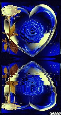 GIFS HERMOSOS: flores encontradas en la web