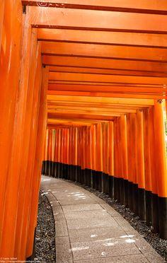 Le Japon était ma destination de rêve depuis plus de 17 ans. J'y ai enfin été pour un mois extraordinaire. Mon bilan de ce mois au Japon est par ici(on y parle budget, transport, visites, culture et logements!): http://voyagesetvagabondages.com/2015/02/voyage-japon-bilan/