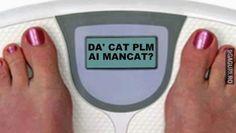 The Funny, Haha, Funny Pictures, Funny Memes, Facebook, Humor, Fanny Pics, Ha Ha, Funny Pics