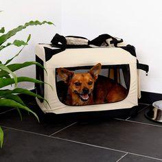 dibea Hundetransportbox Hundetasche Faltbare Transportbox Autobox Kleintiertasche - für Unterwegs der richtige Begleiter! Scooby Doo, Fictional Characters, Autos, Small Animals, Dime Bags
