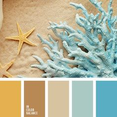 Beige and light blue, sea shells and shore