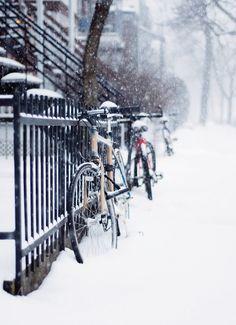 Dévorer Montréal now on sale : Chantelle Grady Green Environment, Winter Light, Its Cold Outside, Montreal, Chill, Wheeling, Snow, Adventure, Places