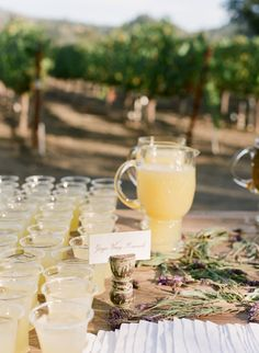 Molly Sims wedding photo by Gia Canali - welcome drink station with ginger honey lemonade and lemon verbena water