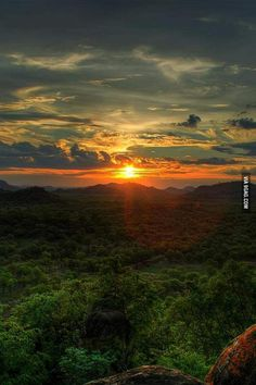 Sunset over an African forest