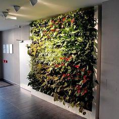 Instalace Vertikálních zahrad Gro-Wall® | Tabu Group s.r.o. Kladno Group, Wall, Plants, Furniture, Design, Home Decor, Decoration Home, Room Decor