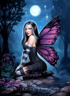 Night Fairy by James Rayman