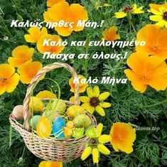 Good Morning Picture, Morning Pictures, Wicker Baskets, Places, Lugares, Woven Baskets