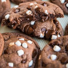 Looking for the best Christmas Cookie Recipes? This great collection of easy, tried and true Christmas Cookie Recipes is perfect for your holiday baking. Hot Chocolate Cookies, Cocoa Cookies, Galletas Cookies, Eggnog Cookies, Marshmallow Cookies, Hot Chocolate Mix, Chocolate Chips, Man Cookies, Baking Cookies