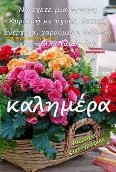 Good Morning Quotes, Good Night, Floral Wreath, Greek, Facebook, Photos, Decor, Art, Punto De Cruz