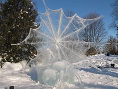 Spider and her web Ice sculpture