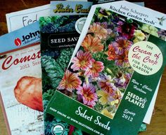 Seed Catalogues: Read, Weed, then Order