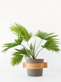 DIY leather plant tags; bijvoorbeeld 'I will survive' of de namen van kruiden [monsterscircus com].