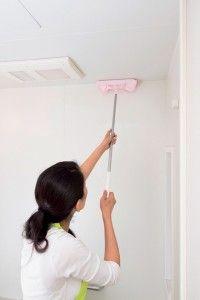 浴室のガンコなカビを落とす掃除術 フタや天井の黒ズミもすっきり