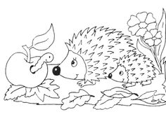 AusmalbilderHQ: Coloring Pages — window color malvorlagen herbst. Cars Coloring Pages, Pokemon Coloring Pages, Animal Coloring Pages, Coloring Pages For Kids, Coloring Sheets, Coloring Books, Colouring, Baby Pokemon, Hedgehogs
