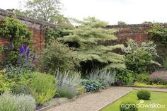 Galeria zdjęć - Ogrody angielskie - Hoveton Hall Gardens - Ogrodowisko