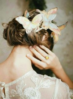 ~ Butterfly Dreaming ~