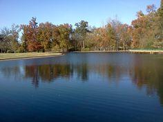Overton Park in Memphis, TN