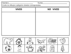 Spanish:Living and NonLiving. Seres vivos y no vivos from Mrs. G. Dual Language…
