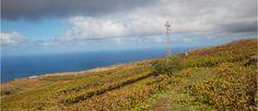 Teneriffa - Individuelle Inselrundreise - Eindrücke von Teide, LaLaguna