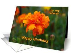 Happy Birthday Sister, Marigold, October Birth Flower card http://www.greetingcarduniverse.com/birth-month-flower-specific-birthday-cards/october-marigold-calendula/relationship-specific/happy-birthday-sister-marigold-october-664657?gcu=42967840600