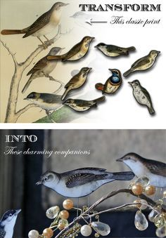 Paper Craft: Perching Birds! - The Graphics Fairy