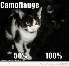 Camouflage 100% #blackcatsrule