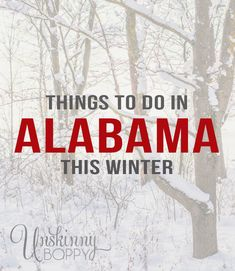 Alabama is known for many things: Gulf coast beaches, winning football teams, rolling fields of cotton, and some of the best bass fishing in the whole country. I am born and raised in the great state of Alabama, and I've spent almost 40 years driving the backroads looking for the best things to do. These days I try to find things that are fun for mykids, too. On this first day of winter, it's time to get out there and  {Read More}