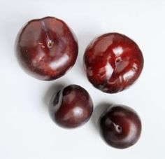 How to Grow Plum Trees in Texas