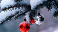 Koshie O wishes you and your family a wonderful Christmas Day! http://www.koshieo.com/